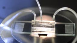 Close-up of a microfluidic chip, The Lutetium Project – Gulliver laboratory, ESPCI Paris – Microfactory