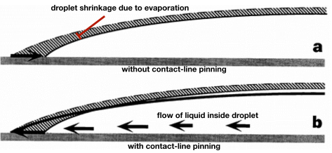 droplet cross sections