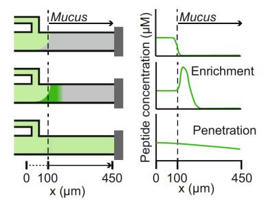 mucus_microfluidic