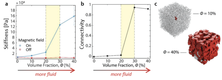 On the left, a graph of stiffness as a function of the fluid volume fraction. In the middle, a graph of connectivity as a function of the fluid volume fraction. On the right, two 3D construction of material's internal structure, one representing 10% fluid and the other representing 40% fluid.